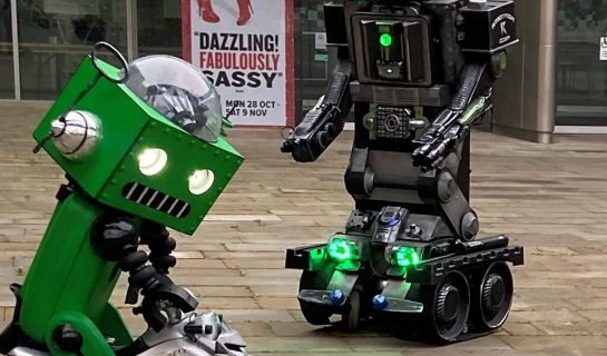 DF Robots